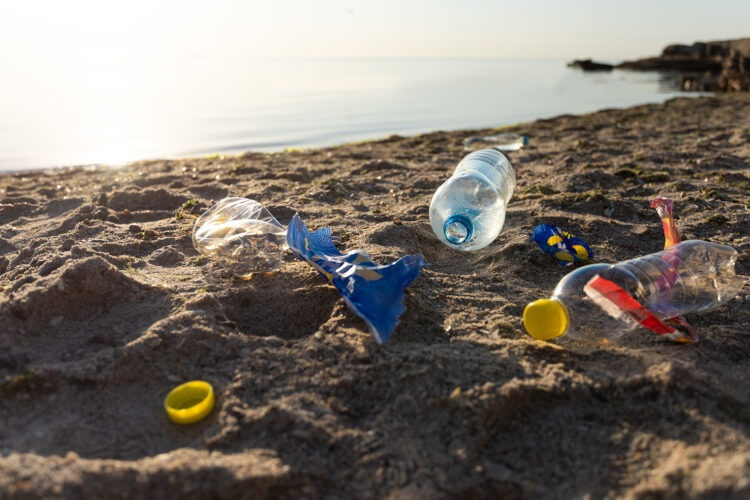Plastic Polution